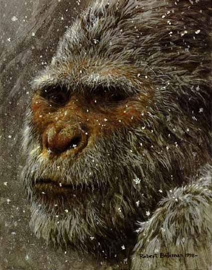 Expedición tras el Yeti Siberiano-https://yspuwa.blu.livefilestore.com/y1milQ-ywqPUcCnJvUlKaYYHF5ejCjIIERg47jABMpRj7wAOhvahJUErqX65fPmf3MhZLy0Fbnc04SMol0QU9zWdogBVYibIm8nDWOcxjkzW00ztxcNKOxNmWObDswhj7yCeBRXQie_pAA/yeti.jpg